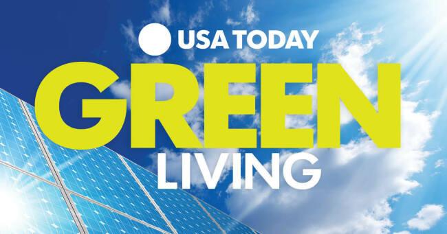 Green Living 2019